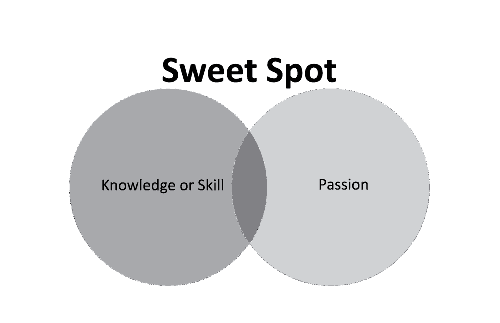 Sweet Spot: Din ekspertise og din lidenskap